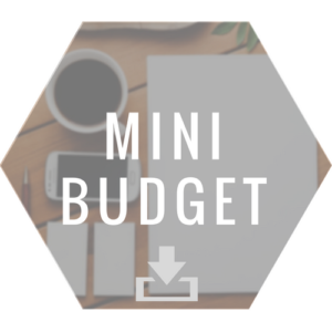 Link to mini budget form